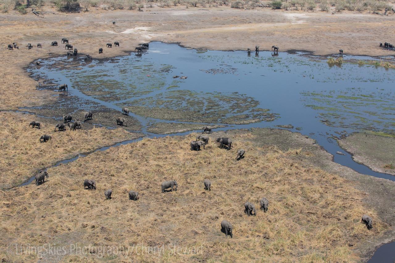 1609_Botswana_538