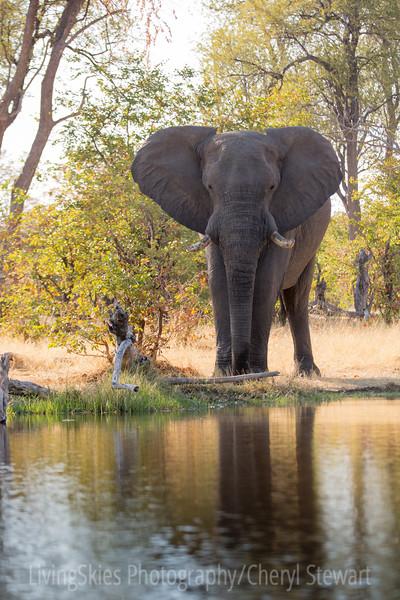 1609_Botswana_268-2