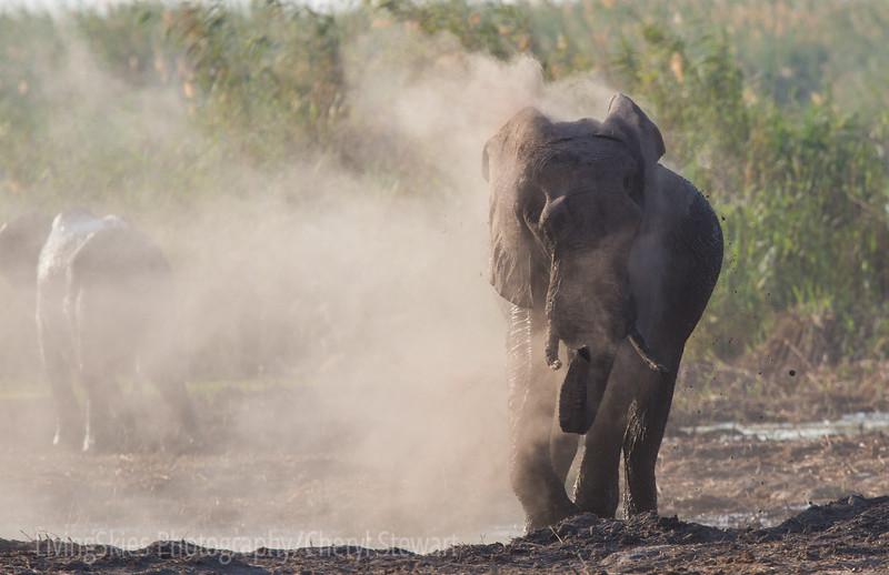 1609_Botswana_381