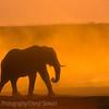 1609_Botswana_172