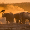 1609_Botswana_148