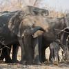 1609_Botswana_095-2