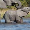 1609_Botswana_139