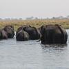 1609_Botswana_153