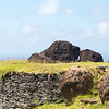The area is full of carvings, and thousands of  petroglyphs related to the Bird Man cult,