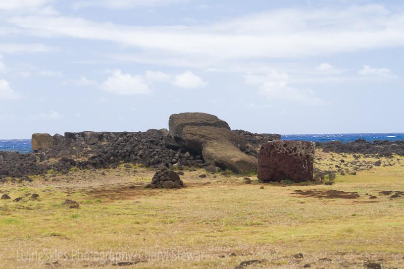 Around 1680 most of the Moai were toppled during tribal wars - Ahu Te Pito Kura