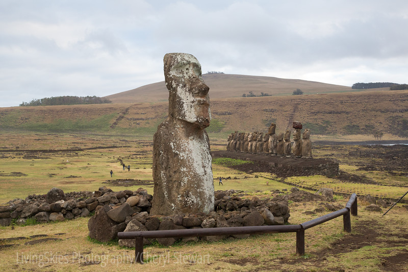 a lone Moai up the hill from Ahu Tongariki,