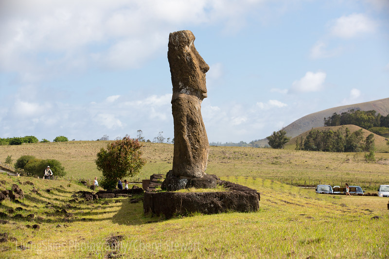 The Seven Moai at Akivi -  from one end, in perfect line.
