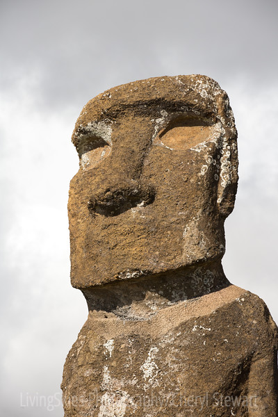 Believed to have been carved from 1100 to 1600, almost 900 of them are found on the Island. Each one is believed to represent an important person, from that tribe.