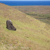 """Rano Raraku - as the moai were finished, they were moved from the """"quarry"""" to various locations on the island.  Shifting earth has buried many, and this one probably has a full body beneath it."""