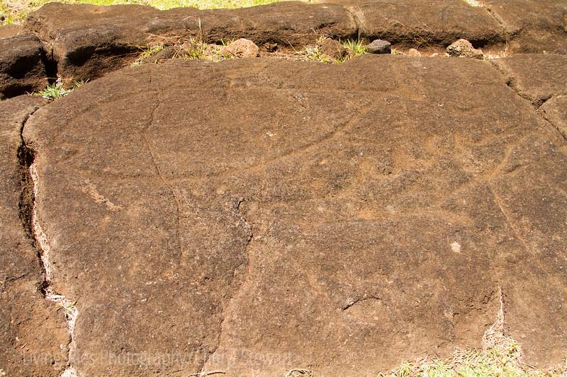 Papa Vaka - full of petroglyphs and stone carvings, of fish, a huge double canoe, fishhooks and various sea life