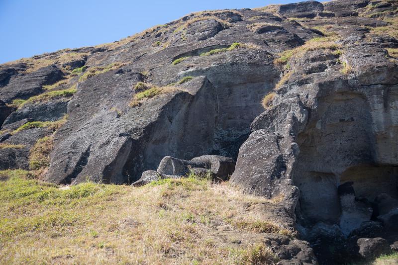 Rano Raraku -   moai, face remains attached to the hillside