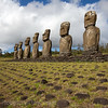 Moai face the sea, at Ahu Akivi. These are the only Moai that face outward, all others on the Island look inland.