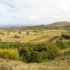 The view overlooking cropland from Maunga Pun Pau
