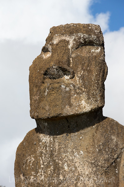 A single Moai would have taken a team of 5 or 6 men a year to complete