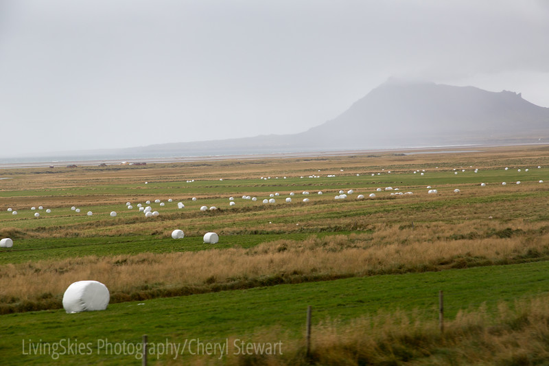 Bales wrapped in plastic