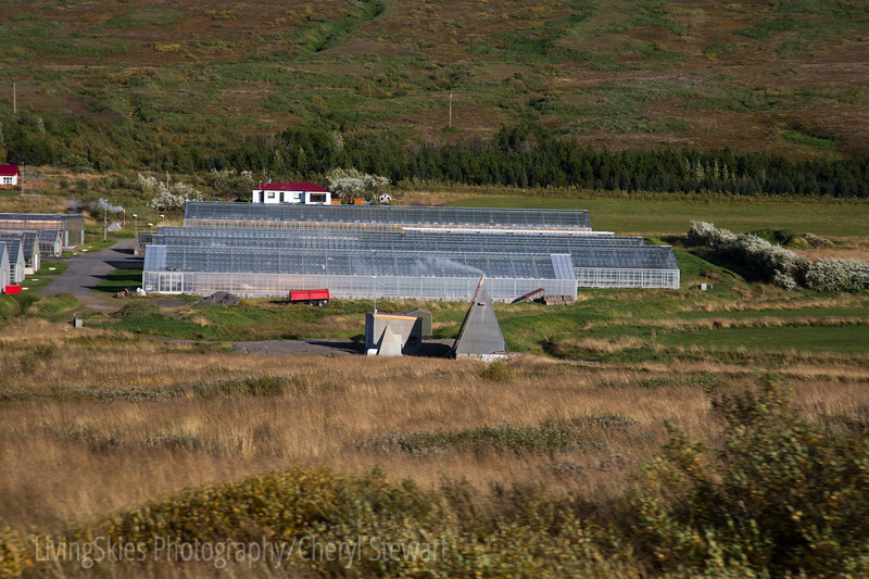Greenhouses, heated by underground thermal water