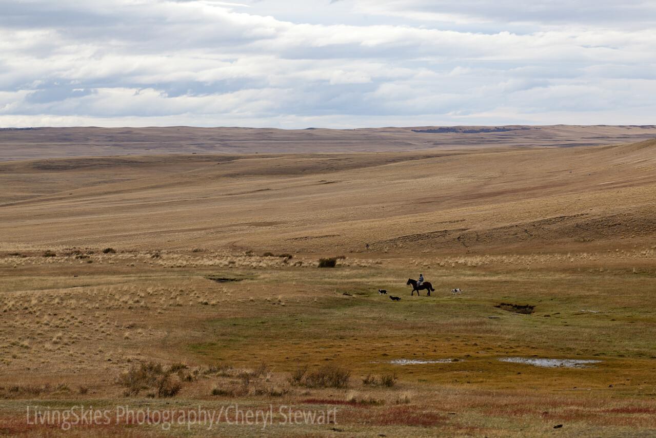 1104_Patagonia_021-2