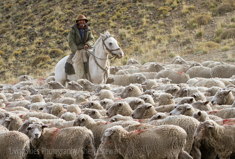 1104_Patagonia_046