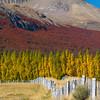 1104_patagonia_060