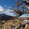 1104_Patagonia_046-2
