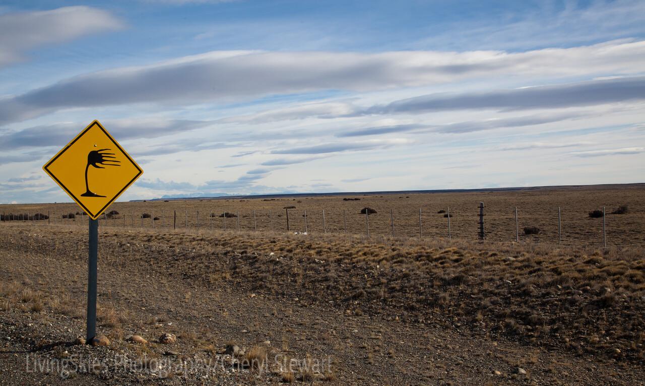1104_Patagonia_004-2