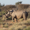 1608_SouthAfrica_716