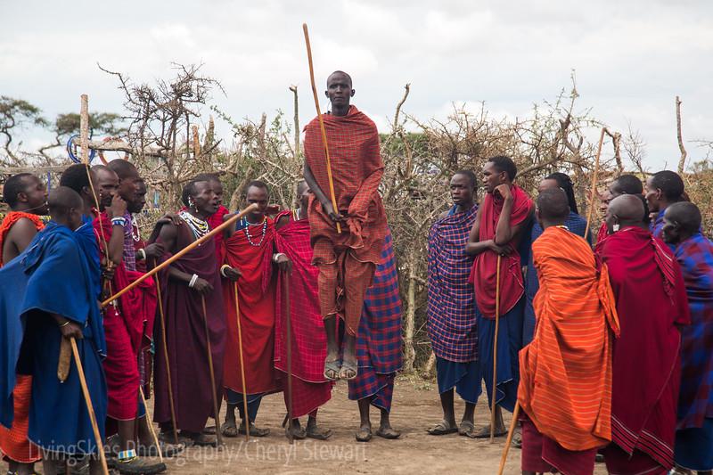 Maasai Boma Dance