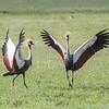 1804_Tanzania10_495