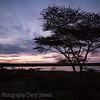 1804_Tanzania9_002