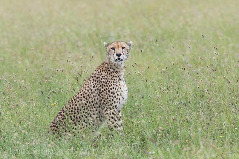 1804_Tanzania14_321