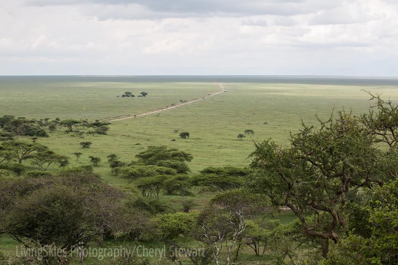 1804_Tanzania9_187