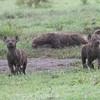 1804_Tanzania14_714