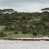 1804_Tanzania4_1048