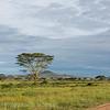 1804_Tanzania4_312