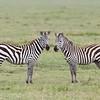 1804_Tanzania13_115
