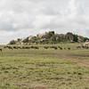 1804_Tanzania1_497