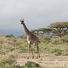 1804_Tanzania9_416