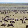 1804_Tanzania2_561