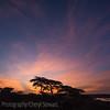 1804_Tanzania9_303