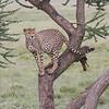 1804_Tanzania1_376