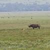 1804_Tanzania10_056