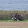 1804_Tanzania10_021