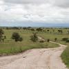 1804_Tanzania4_108