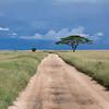 1804_Tanzania1_065