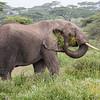 1804_Tanzania4_1363