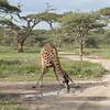1804_Tanzania9_275