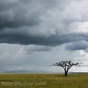 1804_Tanzania1_022