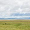 1804_Tanzania4_773