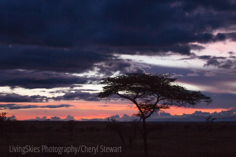 1804_Tanzania1_205